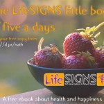 Little Book of Five a Days – free eBook!