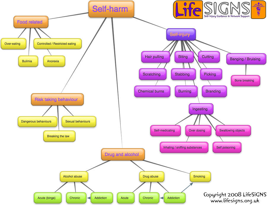 The LifeSIGNS self-harm map