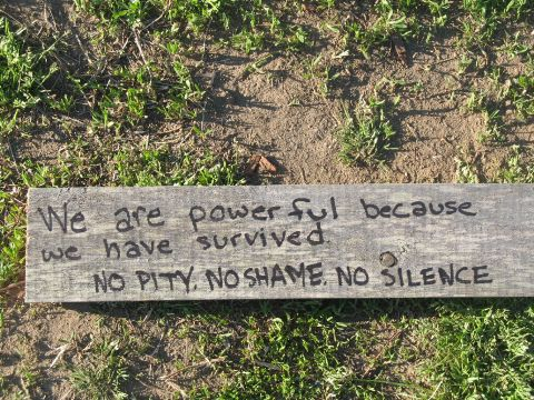 We are powerful because we have survived. No pity - no shame - no siilence.
