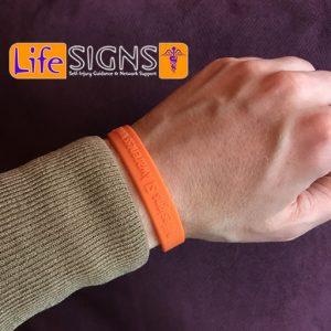 Wristband 2017