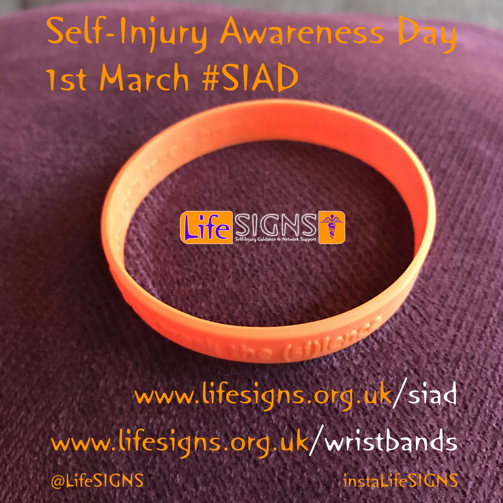 Wristbands for SI Awareness